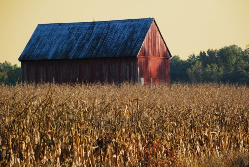 Barn orange sky [Desktop Resolution]